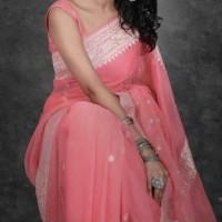 Benarasi Pure Chiffon Saree